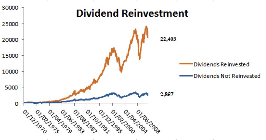 dividends reinvestment chart