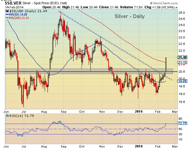 silver price chart_february 2014