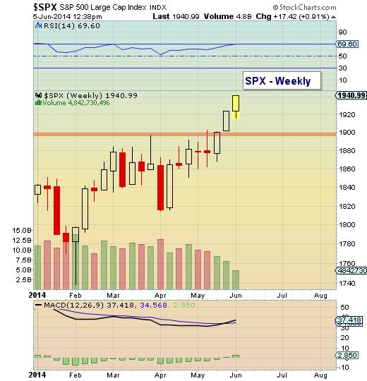 SPX weekly bar chart June 2014