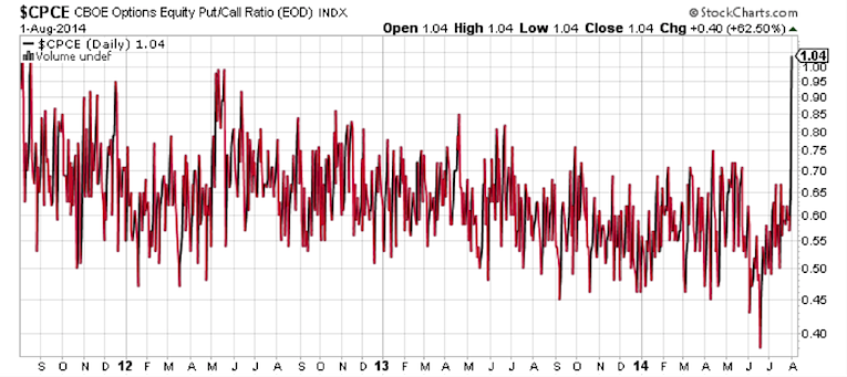 cboe equity put call ratio spike august 2014