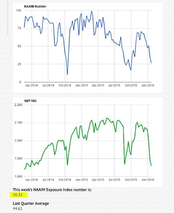 naaim investor exposure index chart january 22