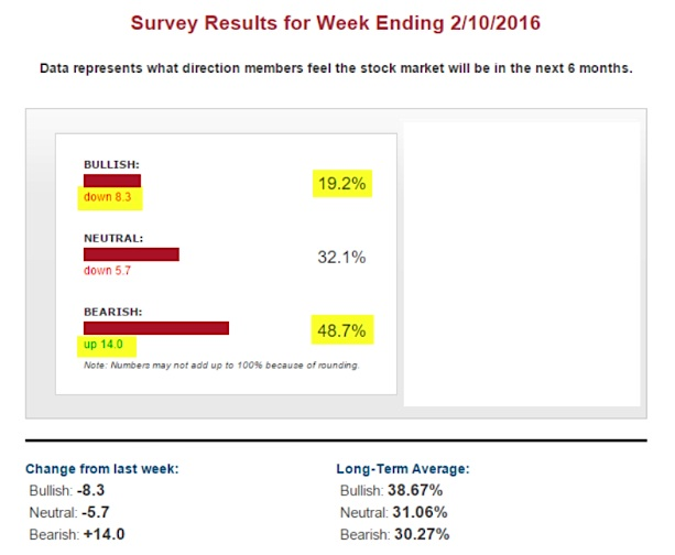aaii investor sentiment survey bulls bears february