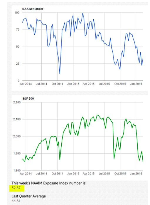 naaim investor sentiment survey bearish february