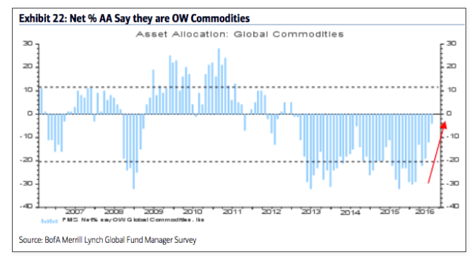 fund managers overweight commodities_baml survey july