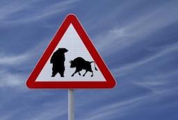 bull, bear, sign, market uncertainty, bull vs bear, wall street, showdown, market sign, financial