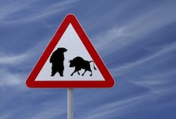 bull vs bear, bullish or bearish, stock market caution, financial uncertainty, uncertain markets