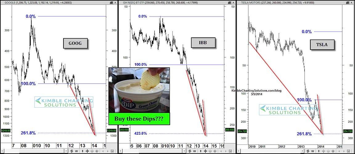 buy the dip investor bias charts