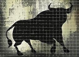 bull market image