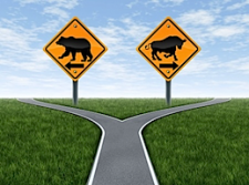 stock market bull or bear road