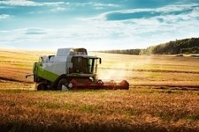 farm field harvesting