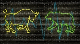 financial market bull bear