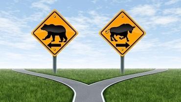 trading stocks bull bear