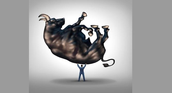 investor holding up bull market