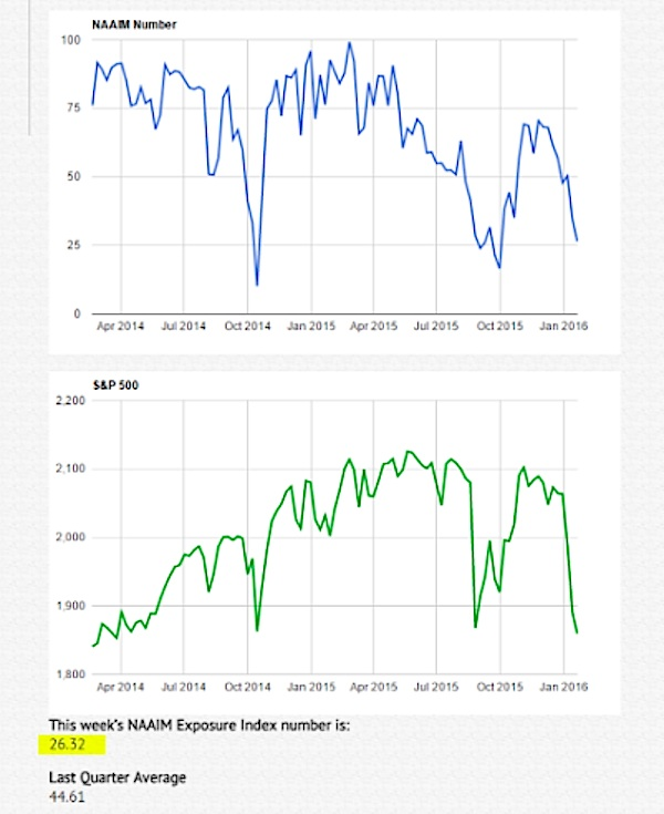 naaim investor exposure index chart january 22