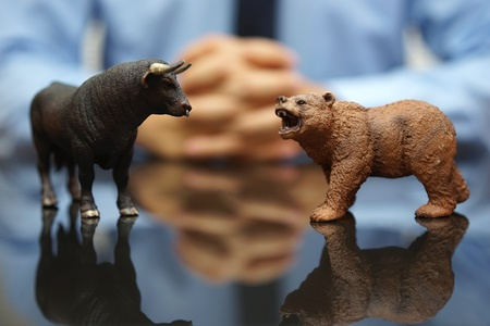 state of the market stock bull and bear