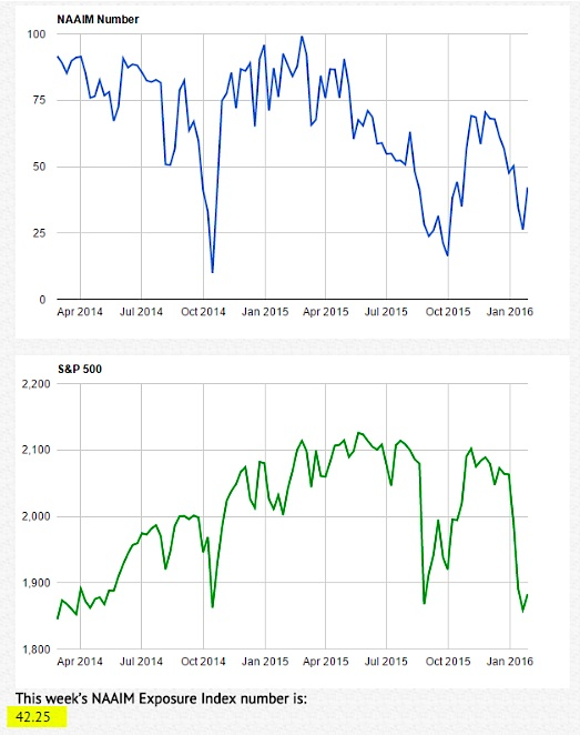 naaim investor sentiment survey bulls bears chart january