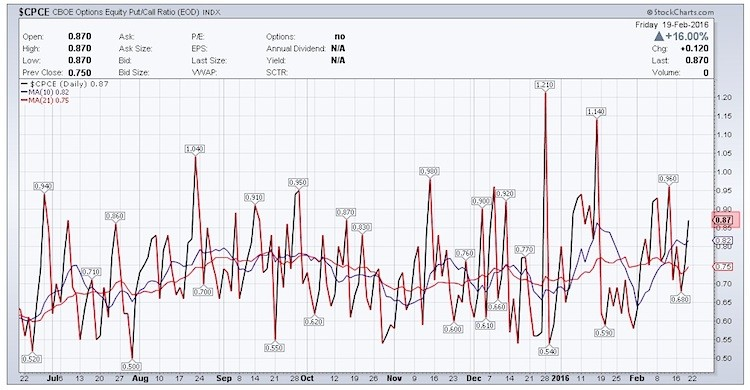 put call ratio stock market indicator fear rising february