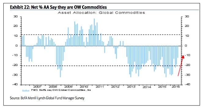 fund managers asset allocations percent commodities june_baml