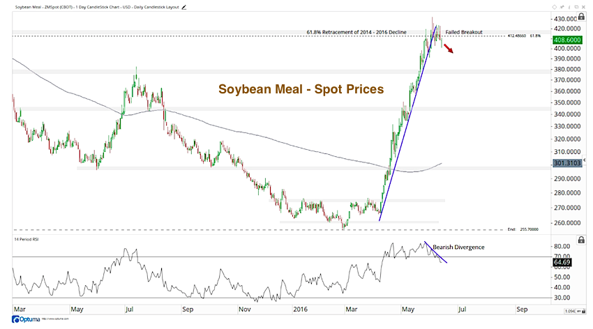 soybean meal rally chart_topping pattern june