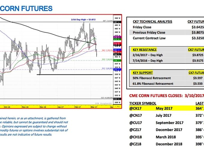 Corn Futures Outlook: Weighing Brazil's Record Production