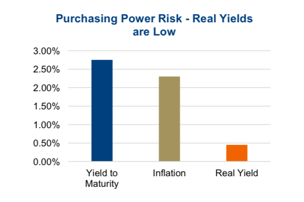 purchasing power investing risks yields