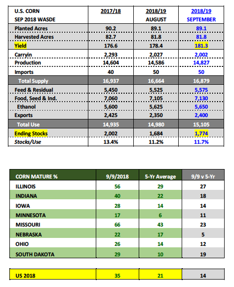 us corn planted acres yield production data september 13 wasde report