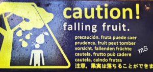 falling stocks_fruit sign