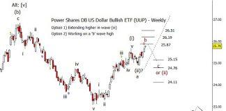 us dollar bullish etf uup elliott wave forecast higher wave 5 price target_year 2019