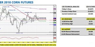 december corn futures trading analysis indicators forecast week november 19