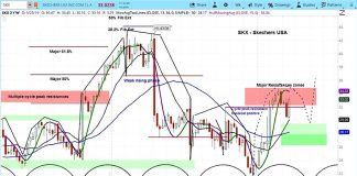 skechers skx stock research upgrade analysis news price chart march 28