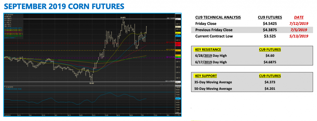 september 2019 corn futures trading analysis chart image rally july 15 news