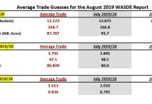 august wasde corn report estimates production yield acreage image