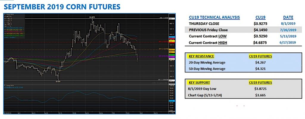 september corn futures trading forecast month august bullish analysis image