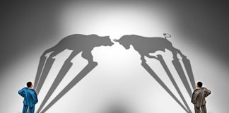 stock market bull bear investors news image