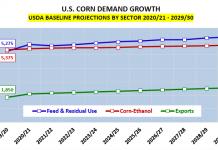 us corn demand growth sectors 10 year forecast