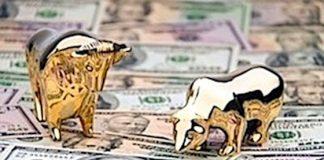 wall street bull bear on money