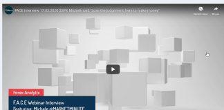 stock market crash michele schneider interview