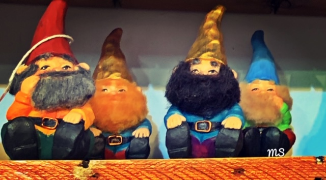stock market gnomes