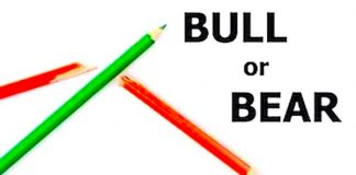 bull bear up down stock market image