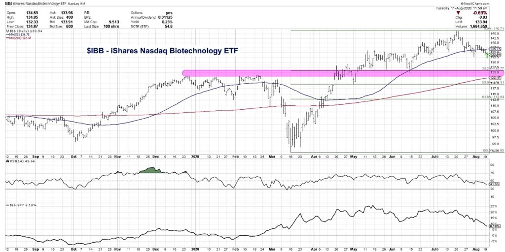 ibb ishares biotechnology sector etf decline lower price targets chart image august 12