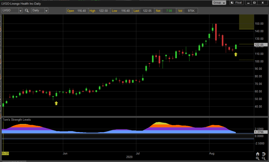 livongo health stock chart lvgo buy bullish higher forecast investing image august 14