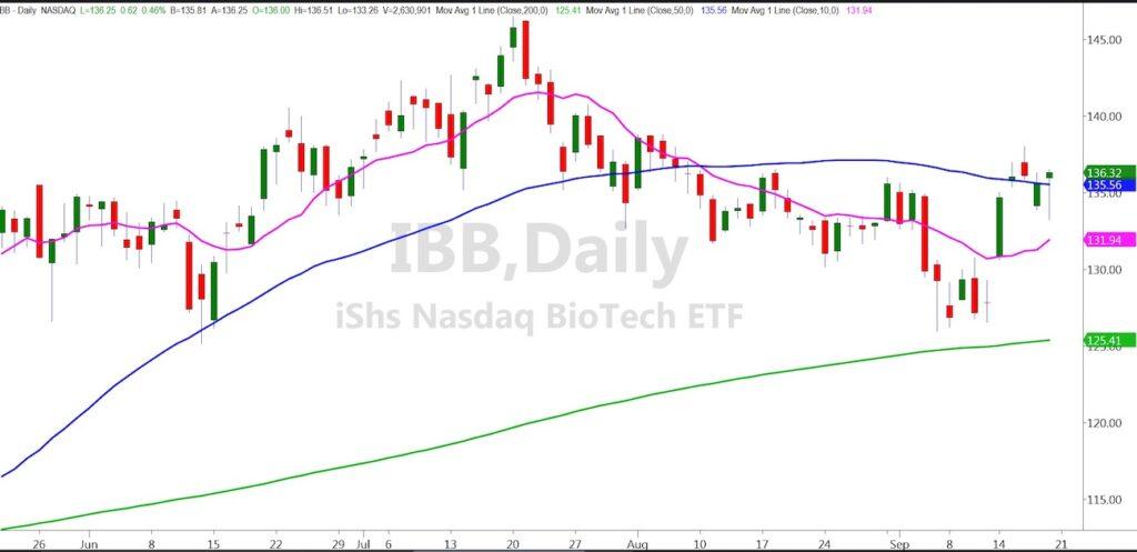 ibb biotech sector etfs buy signal price rally chart image september