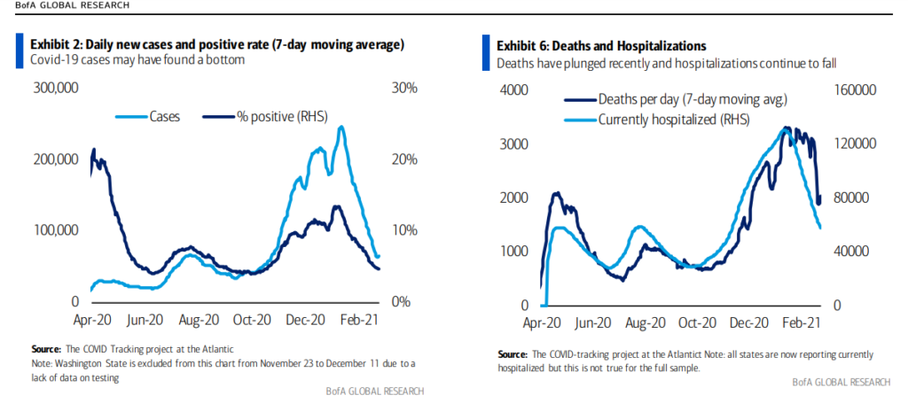 covid cases daily hospitalizations chart february year 2021