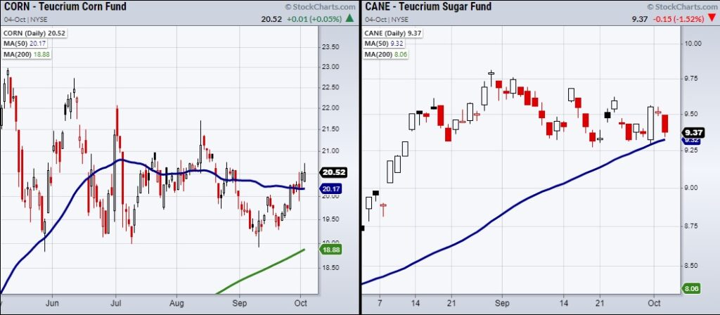 commodities corn sugar rally strength prices chart october